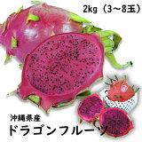 【送料無料】沖縄県産ドラゴンフル−ツ1kg(2〜5玉)