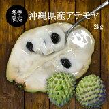 【送料無料】沖縄県産アテモヤ2Kg(8玉〜14玉)森のアイスクリームカスタ−ドアップル