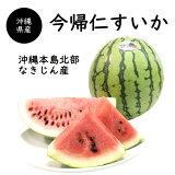 【送料無料】沖縄県産今帰仁スイカ2玉