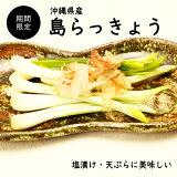 【送料無料】沖縄県産島らっきょう1kg
