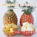 【送料無料・即発送可】沖縄県産スナックパイン&ピーチパイン食