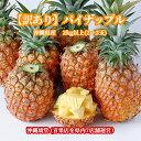 【送料無料・即発送可】沖縄県産【訳あり】パイナップル(パイン