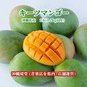 沖縄県産キーツマンゴー(幻のマンゴー) 2玉(1.2kg以上
