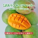 沖縄県産【訳あり】キーツマンゴー(幻のマンゴー) 2~4玉(