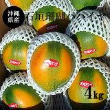 【送料無料】沖縄県産石垣珊瑚パパイヤ4Kg