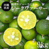 【送料無料】沖縄県産シークワァーサー9kg(240〜480玉)