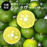 【送料無料】沖縄県産シークワァーサー1.5kg(40〜80玉)