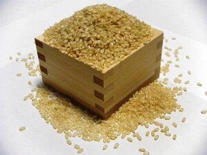 低農薬米 ぷりそそいだおこめ ナナツボシ