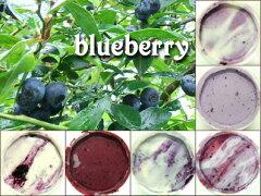 2012年初物入荷しました♪無農薬ブルーベリーを使った特選ジェラートセット6種×各1=合計6個入...