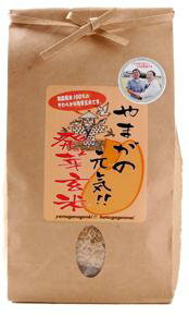 熊本の自然食品【自然農園 蓮華】やまがの元気!!発芽玄米(120g×7袋)<無農薬有機栽培!>