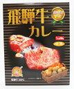 覇楼館 飛騨牛カレー 中辛 250g×10個(1ケース)
