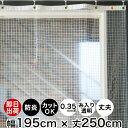 【法人様直送限定】ビニールシート 透明 0.3mm×183cm幅×30m巻 日本ウェーブロック タフニール透明【代引不可】