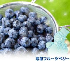 冷凍フルーツ ブルーベリー 500g×2=1kg ★冷凍配送★パソコンの文字とにらめっこしているあ...