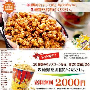 【送料無料】20種類のポップコーン 5種類選んで!キャラメルポップコーン・チーズポップコーン...