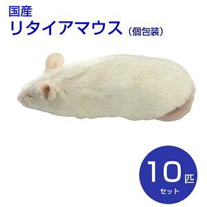 国産冷凍マウス リタイア 10匹...