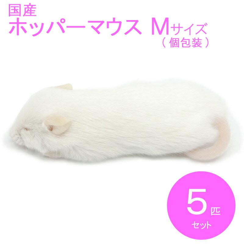 国産冷凍マウス ホッパーM  5匹 SAfarm