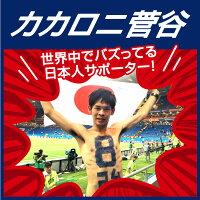BASEBALLGOODSSHOPイチオシ商品!カカロニ菅谷「8強」Tシャツ