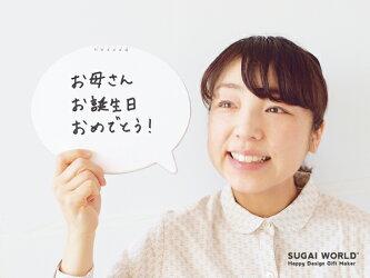 【SUGAIWORLD/スガイワールド】クリップファミリー/クリップマン・クリップガール・クリップキャット