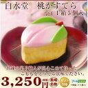 九州 土産 【白水堂 桃かすてら 小 5個】桃カステラ もも カステラ ひなまつり 初節句 ケーキ 和菓子