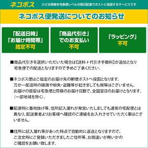 【ネコポス便対応商品】ニコンアクセサリーシューカバーBS-1
