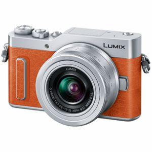 LUMIX(ルミックス) DC-GF10W