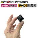 小型カメラ 防犯カメラ 監視カメラ mc-mc100 【あす楽】