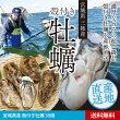 【送料無料】宮城県産殻付き牡蠣30個【LL】