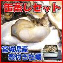 缶入りだから調理もすごく簡単日本三景【松島】のある宮城県からお届け殻付き牡蠣の缶蒸しセッ...