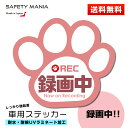 【SAFETY MANIA】録画中 肉球 車用ステッカー ピンク 9cm×8cm...
