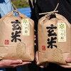 【先行予約】【山形県産つや姫玄米8kg(4kg×2袋)】【送料無料・のし対応】