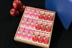 【ごちそうジュース2種ギフトセットりんご・桃果汁100%計18本】【送料無料・のし対応(御歳暮・御中元・父の日・母の日・敬老の日・還暦祝・お誕生日・御祝)】