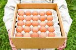 山形県寒河江(さがえ)市ブランド卵『美幸卵(びこうらん)』M〜Lサイズ計50個(割れ保障10個含む)【送料無料】