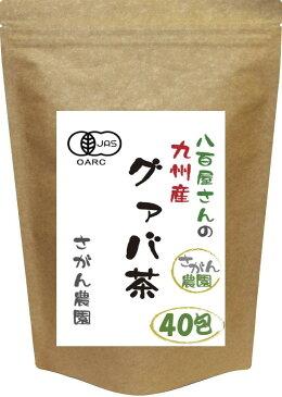 有機栽培 グァバ茶 (3.0g×40包)【グァバ茶/グアバ茶/グアバ茶 国産/グァバ茶 送料無料/グァバ茶/グァバ茶 国産】 10P09Jul16