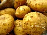 大きい!!!★新ばれいしょ【10kg】2L,3Lサイズ鹿児島、長崎県産★新じゃがいも★馬鈴薯★