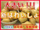 【期間限定】九州から届きました!!!デッカイ!!新ばれいしょ【10kg】3L,2Lサイズ新じゃが●新馬鈴薯●長崎県産●大きいじゃがいも●ポテト