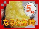 選べる!! なると金時徳島県産【 なると金時 】5kg Mサイズ ☆ 送料無料、【見た目に訳あり】里...