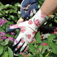 ��ޯ��ʥ����ǥ?��GardeningGlovesLuminus(��ݻ��ߡ���ȼ��ޡ������ǥ˥�