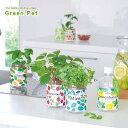 新製品!ペットボトル型 底面給水栽培キット 育てるグリーンペット 選べる6種類!(インテリアグリーン かわいい 家庭菜園