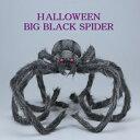 ハロウィン ビッグブラックスパイダー (HW1710 パーティ ホラー 衣装 コスプレ 飾り 店舗 装飾 くも クモ 蜘蛛 )