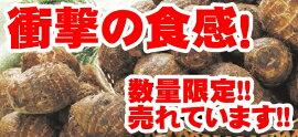 大野芋里芋サトイモ種芋イモ好きをうならせる衝撃の食感1kg