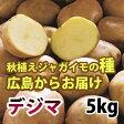 出島(デジマ でじま) ジャガイモ 種芋 5kg【充填時】【8月より入荷次第お届け予定】【S〜Lサイズ混合】