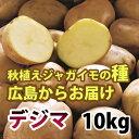 出島(デジマ でじま) ジャガイモ 種芋 10kg【充填時】【8月より入荷次第お届け予定】【広島からお届け】【05P21Aug14】