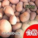 【春植え予約ジャガイモ】【種芋】ジャガイモ じゃがいもの種 500g【インカのひとみ】【検査合格済】【サイズ混合】【05P01Mar15】【HL…