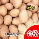 【春植え予約ジャガイモ】【種芋】ジャガイモ じゃがいもの種 2kg【十勝こがね】【検査合格済】【サイズ混合】【02P21Feb15】【HLS_DU】