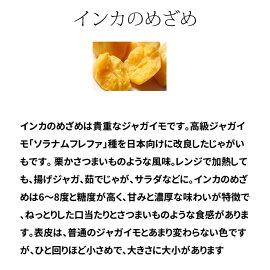 インカのめざめ種芋ジャガイモじゃがいもの種1kg【検査合格済】【サイズ混合】【春植えジャガイモ】