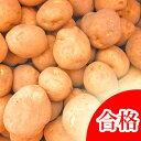 【春植え予約ジャガイモ】【種芋】ジャガイモ じゃがいもの種 1kg【キタアカリ】【北あかり】【検査合格済】【サイズ混合】【02P21Feb1…