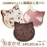 <おまかせ!自家製酵母でつくる福福ねこ食パン3匹セット>ねこパン猫パンネコパン猫食パンねこ食パンネコ食パンしょくぱん猫カフェピルツCafePilz※1か月以内に順次出荷【冷凍配送】