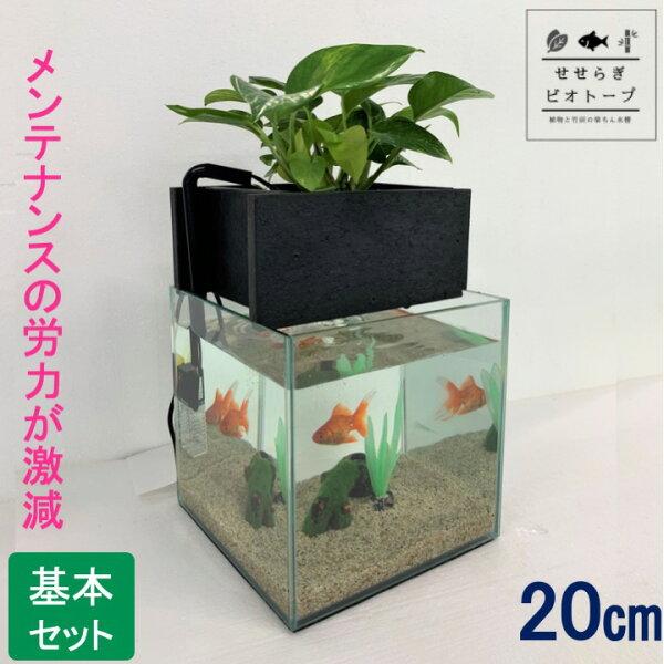 TVで紹介されました せせらぎビオトープおはよう日本NHKまちかど情報室水替え不要基本水槽セット[黒]20cm水槽キューブ型水