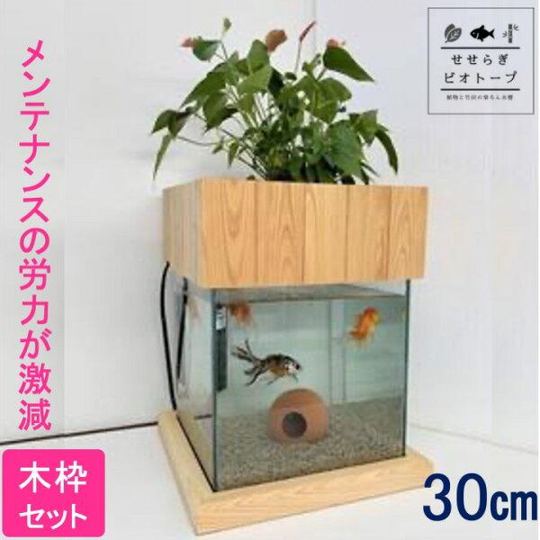 TVで紹介されました せせらぎビオトープNHKおはよう日本まちかど情報室手間いらず水槽セット木枠+台 照明なし 30cm水槽2