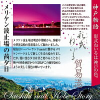 メリケン波止場の茜夕日神戸物語